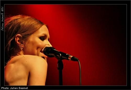 The Cardigans ABBOX 14